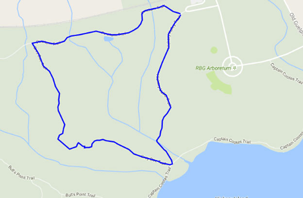 map_greydoe